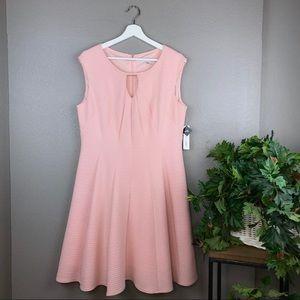 NWT Sandra Darren Blush Pink Fit & Flare Dress